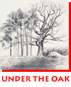 Waitsel Charcoal Illustration Under the Oak