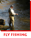 Waitsel's Photography - Fly Fishing the French Broad River