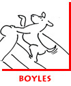 Boyles Furniture Storyboard