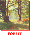 Waitsel Watercolour Landscape Forest